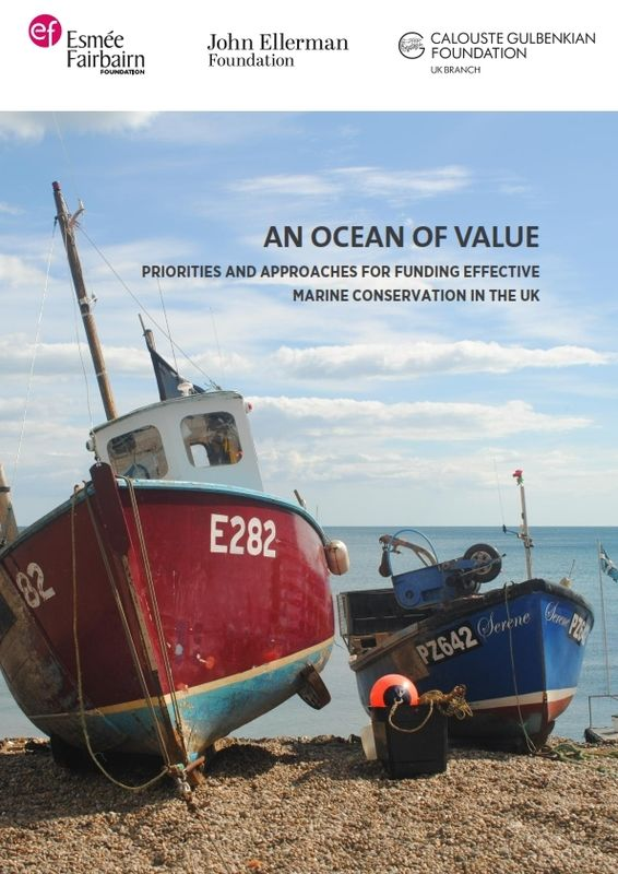 An Ocean Of Value 001